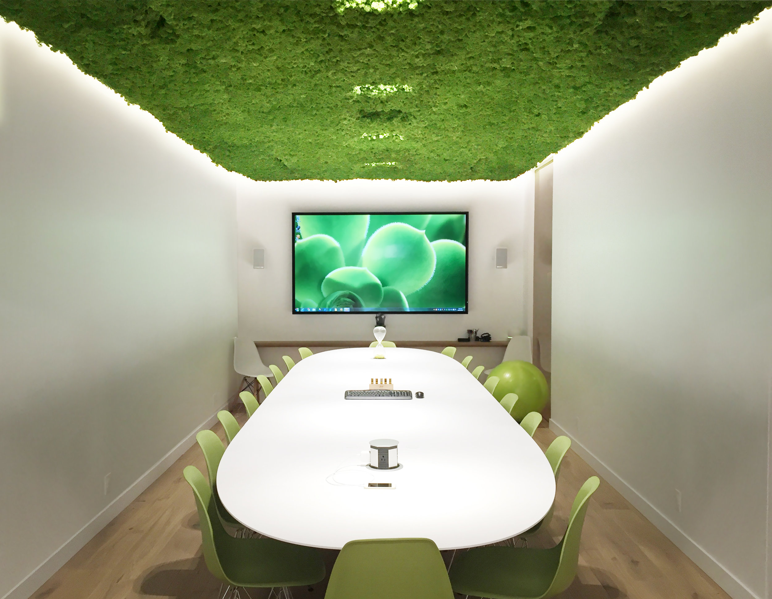 Cove lighting, and a large screen glowing at the end of a cool white boardroom table beg you to open your eyes as you enter this unique room. Discretely nested connections and controls allow occupants to use the audio visual facilities.