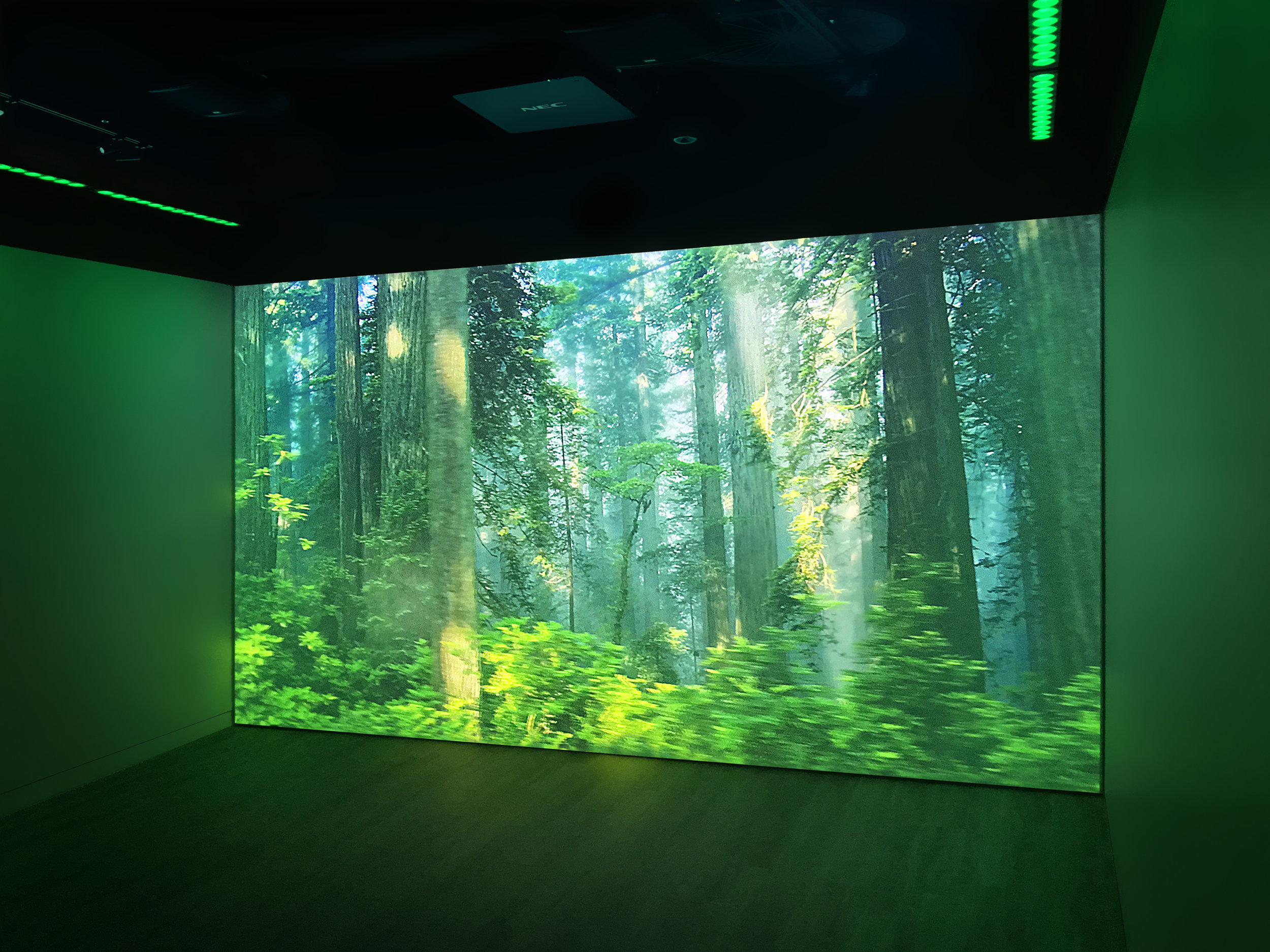 The immense projected image on one wall of the square space is extended with LED colour along the other three walls to create an immersive feeling.