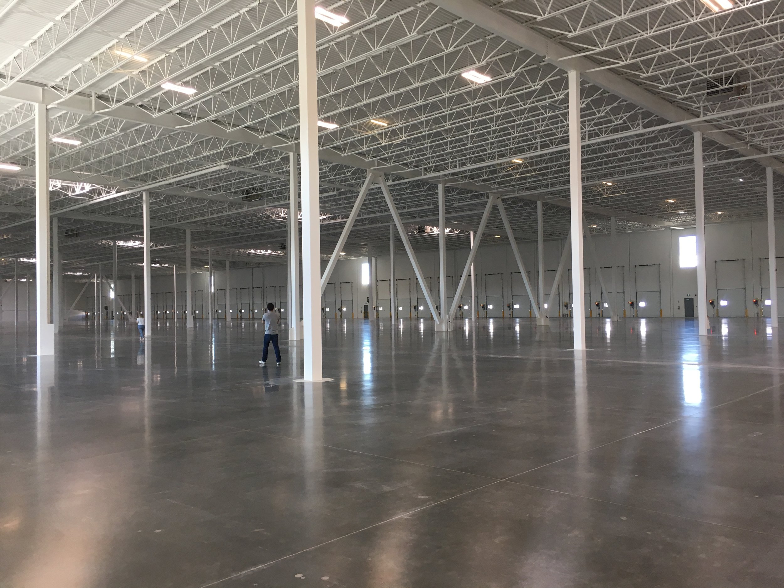 Steel columns break the expanse into a system of future shelving rows.