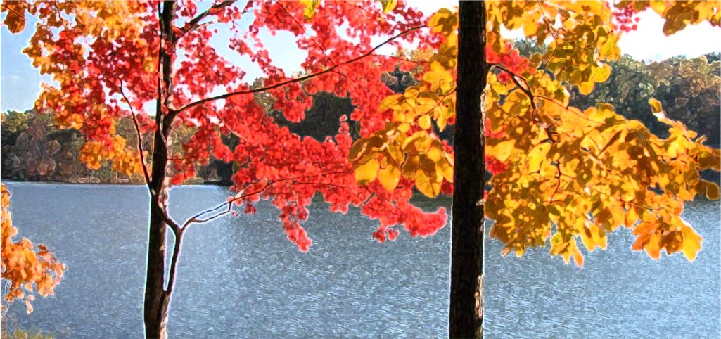 autumn tree in front of lake.jpg