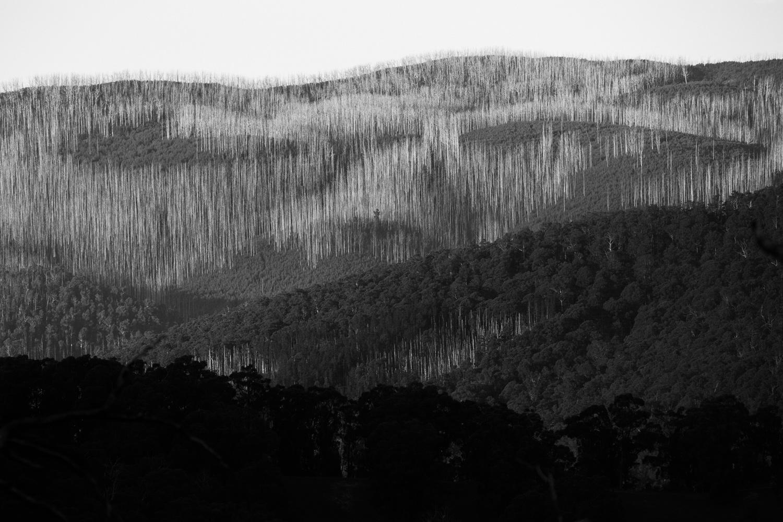 07. Keppel Ridge, Victoria 2018