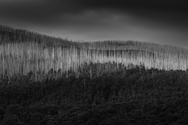 19. Keppel Creek, Victoria 2018