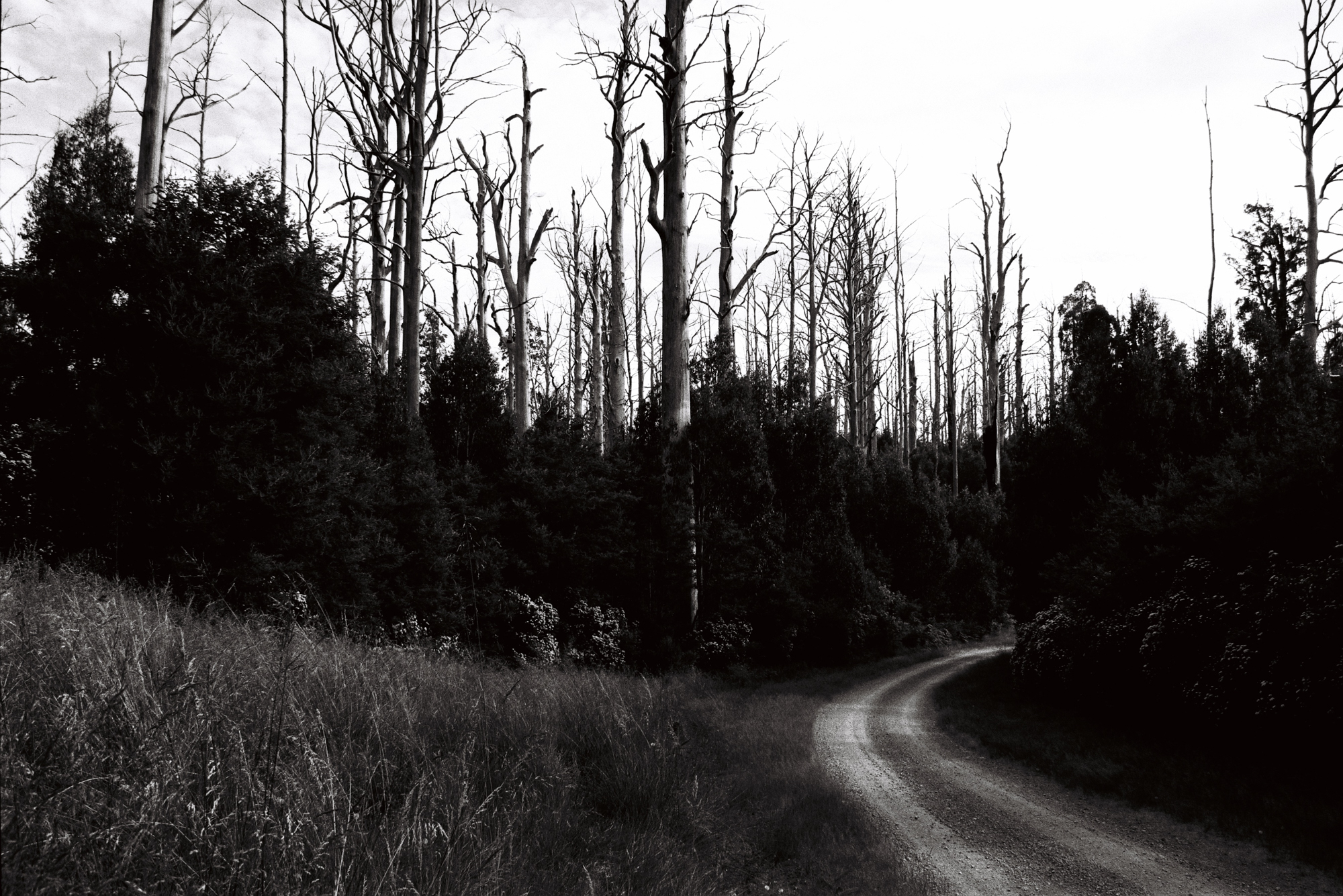 Travelling along Road 8, Victoria - 2018