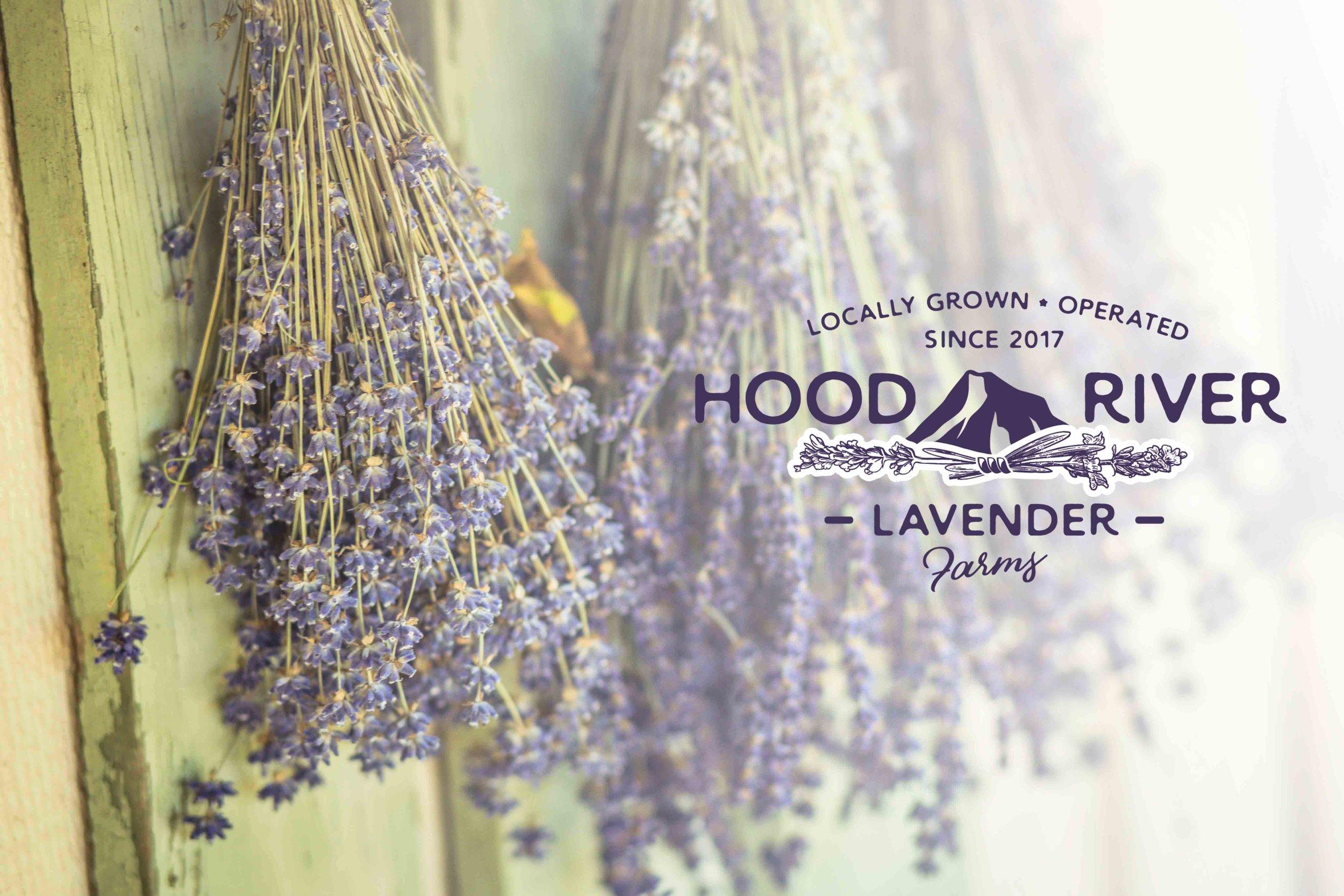 Hood River Lavender Farms Columbia Gorge buy lavender online hood river odell portland pacific northwest pnw creams lavender_-28 (1).jpg