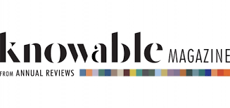 knowable magazine.png