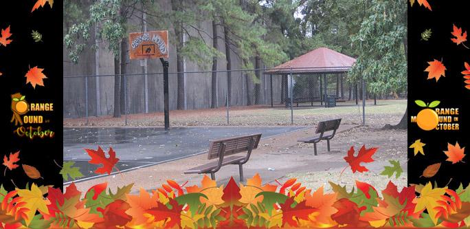 orange mound park.jpg