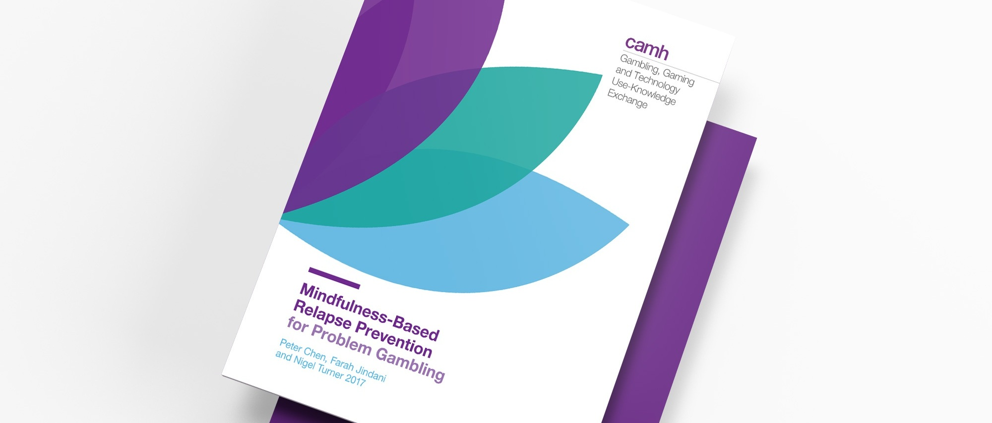 CAMH_GamblingManual_Ebbnflowcreative_Brochure_Publicationdesign_Cover.jpg
