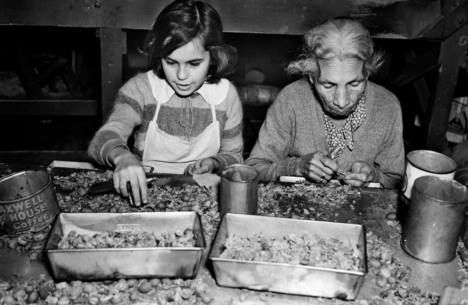 Maria del Refugio Ozuna, age 13, and Mrs. San Juan Gonzales, age 77, working at the Southern Pecan Shelling Company, Jan.17, 1938. Image Courtesy of UTSA Special Collections