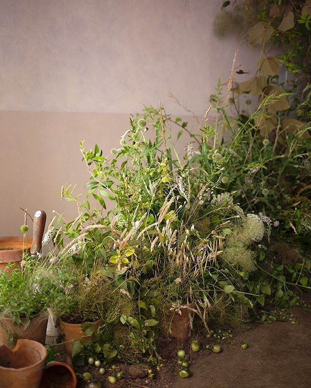 From this time last year on a wonderful Aesme Flowers workshop. Fresh foliage and grasses work their way up towards a cloud of smoke bush and other dried ingredients, reminiscent of the sun-baked gardens we had last summer. Photo by @aesmeflowers.