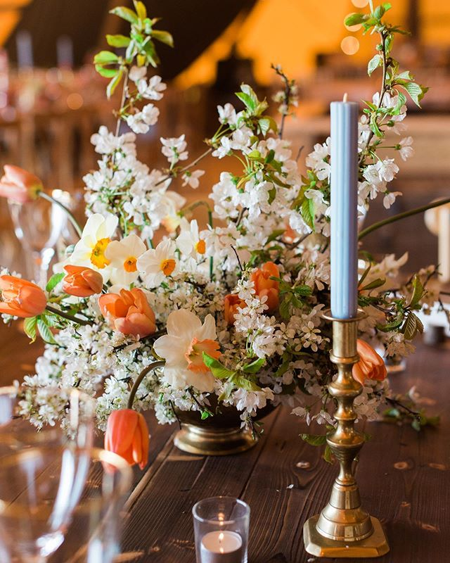Spring blossom, narcissi and tulip table arrangements paired with blue candles, both sitting within brass for the @papakata open weekend @escrickparkestate back in April. Beautiful photo by @lucy_davenport 🧡