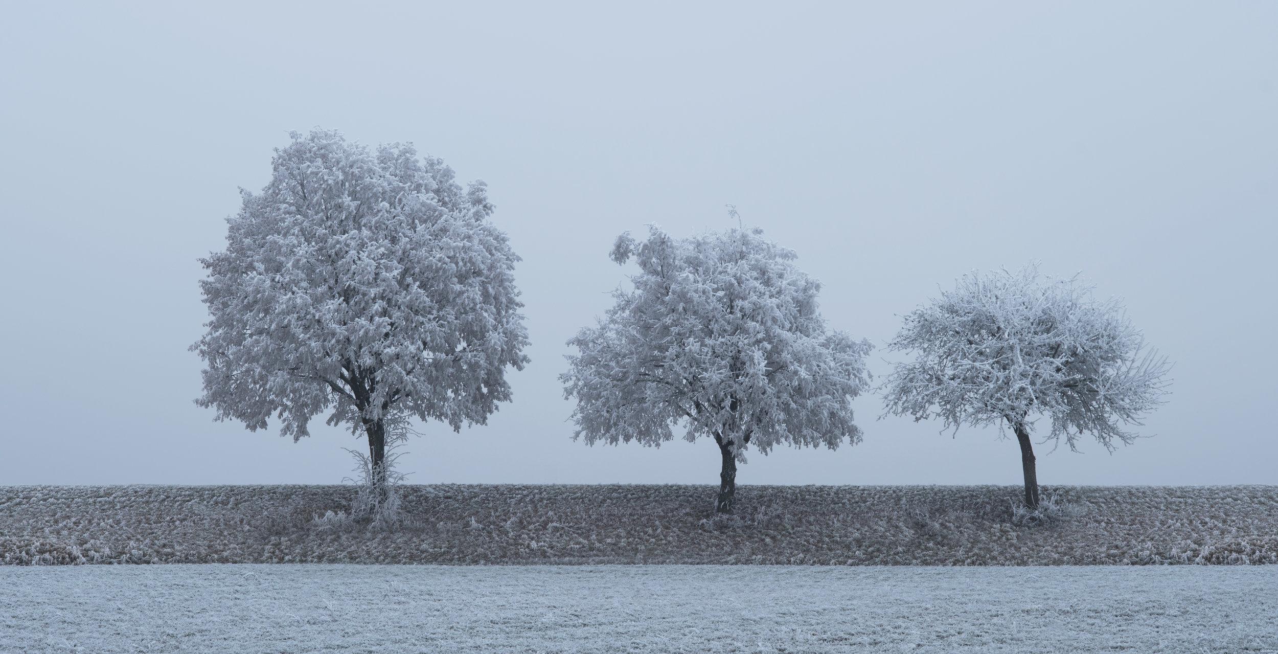 Bastian_Werner_Seminar_Winterlandschaft_photo19_0.jpg