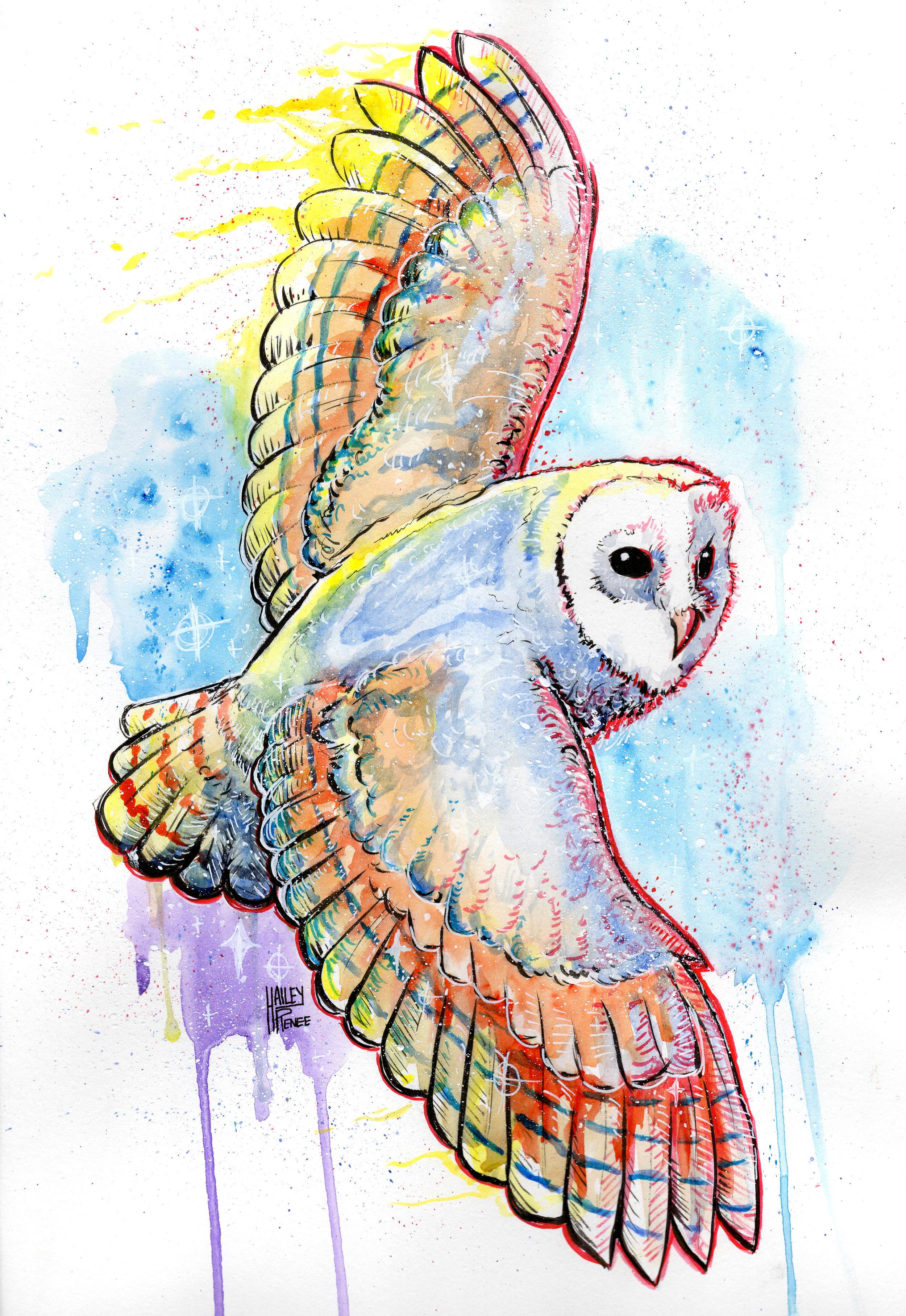 Watercolor Owl.jpg