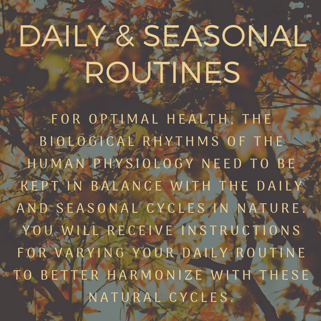 Daily & Seasonal Routines (1).png