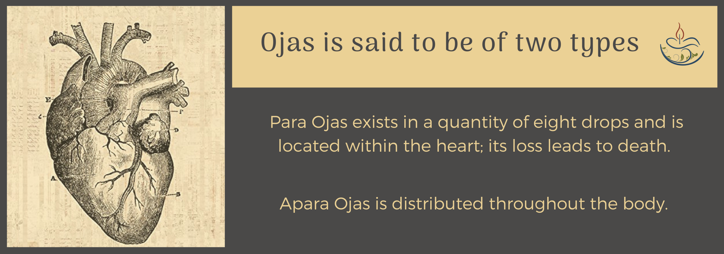 types of ojas - gerson Ayurveda (1).png