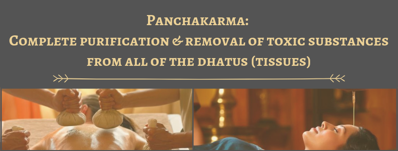 Panchakarma_  Complete purification and removal of toxic substances from all of the dhatus (tissues) - Gerson Institute of Ayurvedic Medicine .png