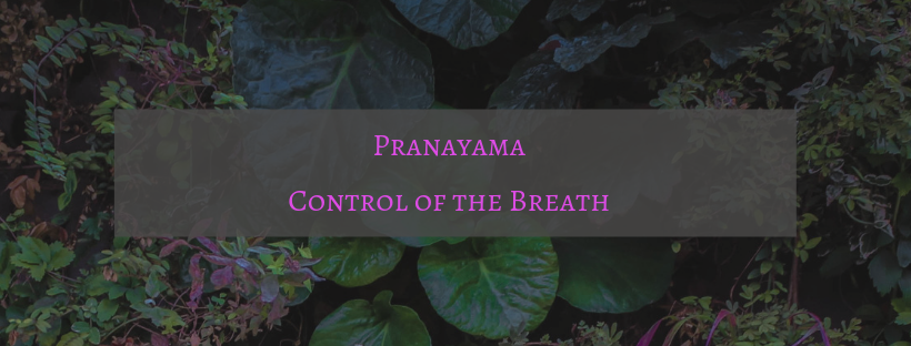 Pranayama -- Control of the Breath.png