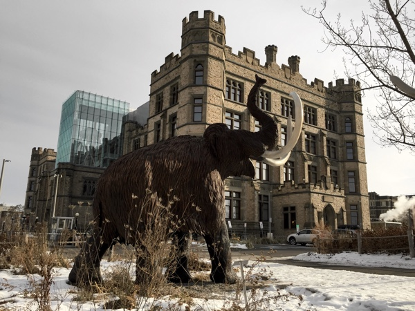 Canadian-Museum-of-Nature-winter-paquet (1).jpg