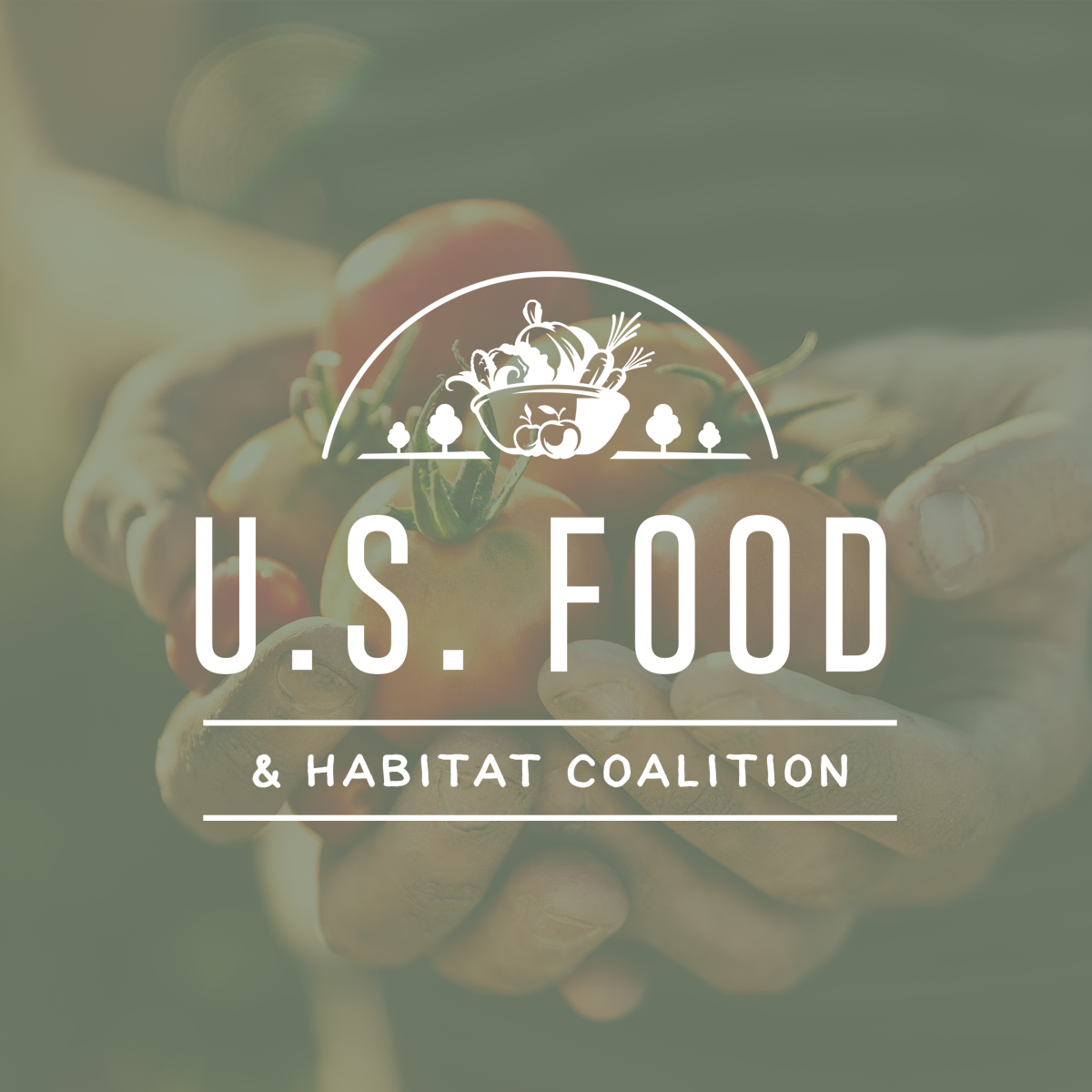 USFHC Logo.png