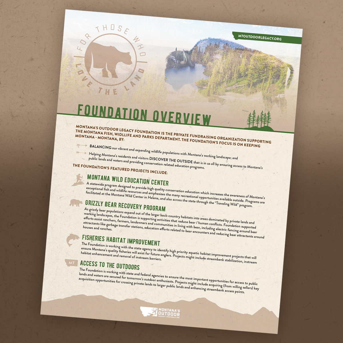 MOLF - Foundation Overview.png