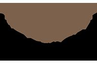 logo_profile_29.png