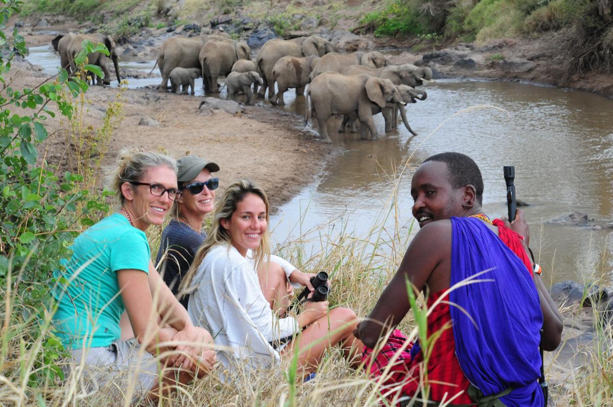 elephantsdrinkingewasonyiroriver.jpg
