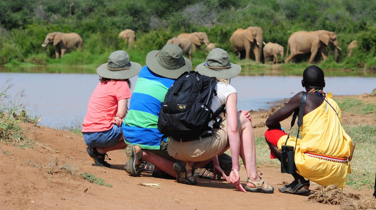safarionfoot.jpg