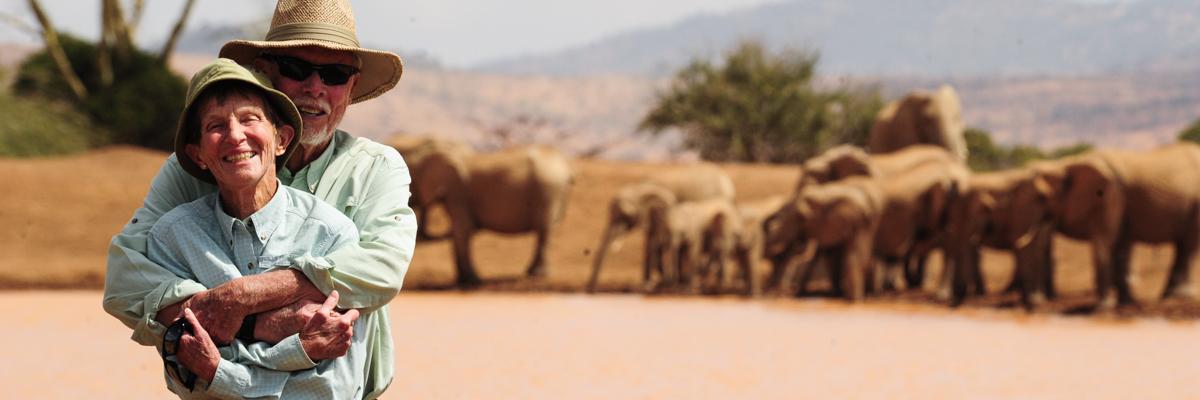 safariswalkingelephants.jpg