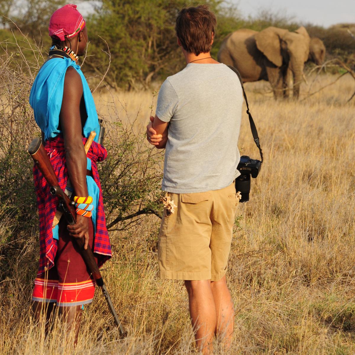 safariswithelephants.jpg