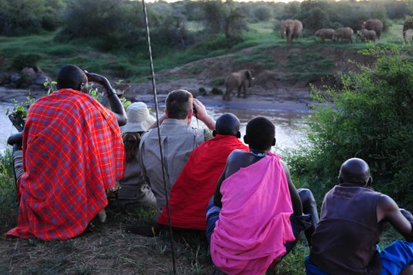 4 Night Tumaren Walking Safari - A four night walking safari spanning the Tumaren conservation area and neighboring land.