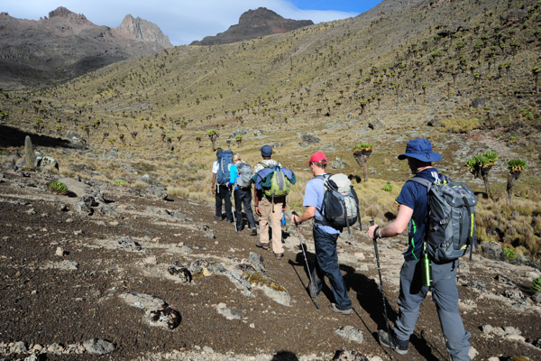 Bushland to Moorland (Mt Kenya and Tumaren) - This safari starts with a 3 night Tumaren Safari, a superb trip of course unto itself, but also an excellent way to acclimate to our altitude and prepare for the hike up Mt. Kenya, one of the most beautiful mountains on the continent.