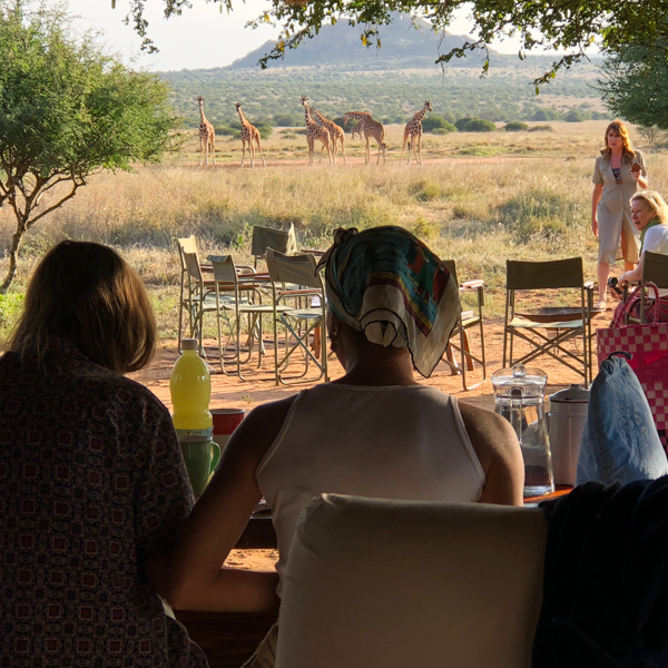 Safaris from a Base Camp - Enjoy our walking safaris from the comfort of Tumaren Camp or our Satellite camp, for walks and drives and adventures. Camels can be ridden or used to carry extra gear and snacks.