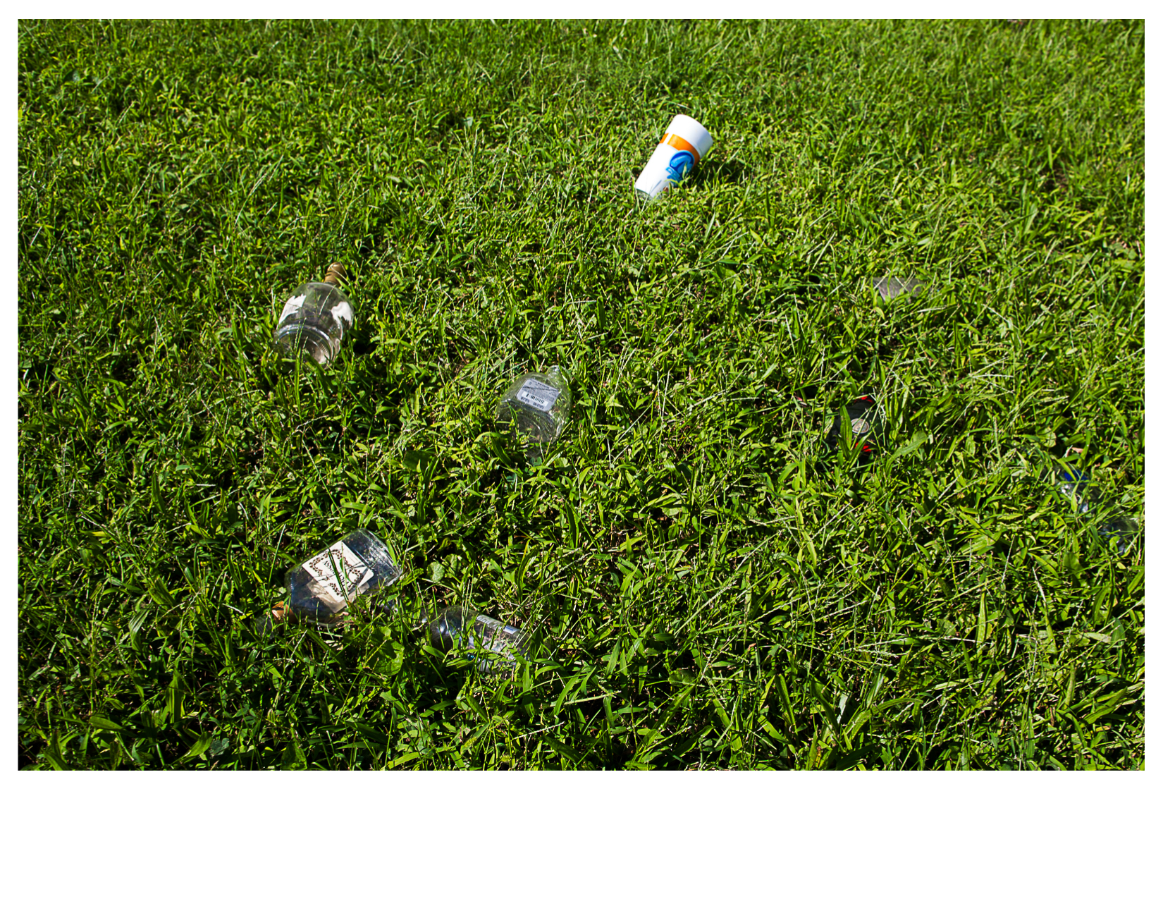 Discarded Liquor Bottles on Lawn, East St. Louis, IL