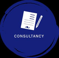 consultancyicon.png