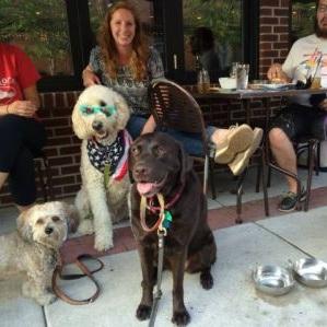 004-barney-dog-training-review.jpg