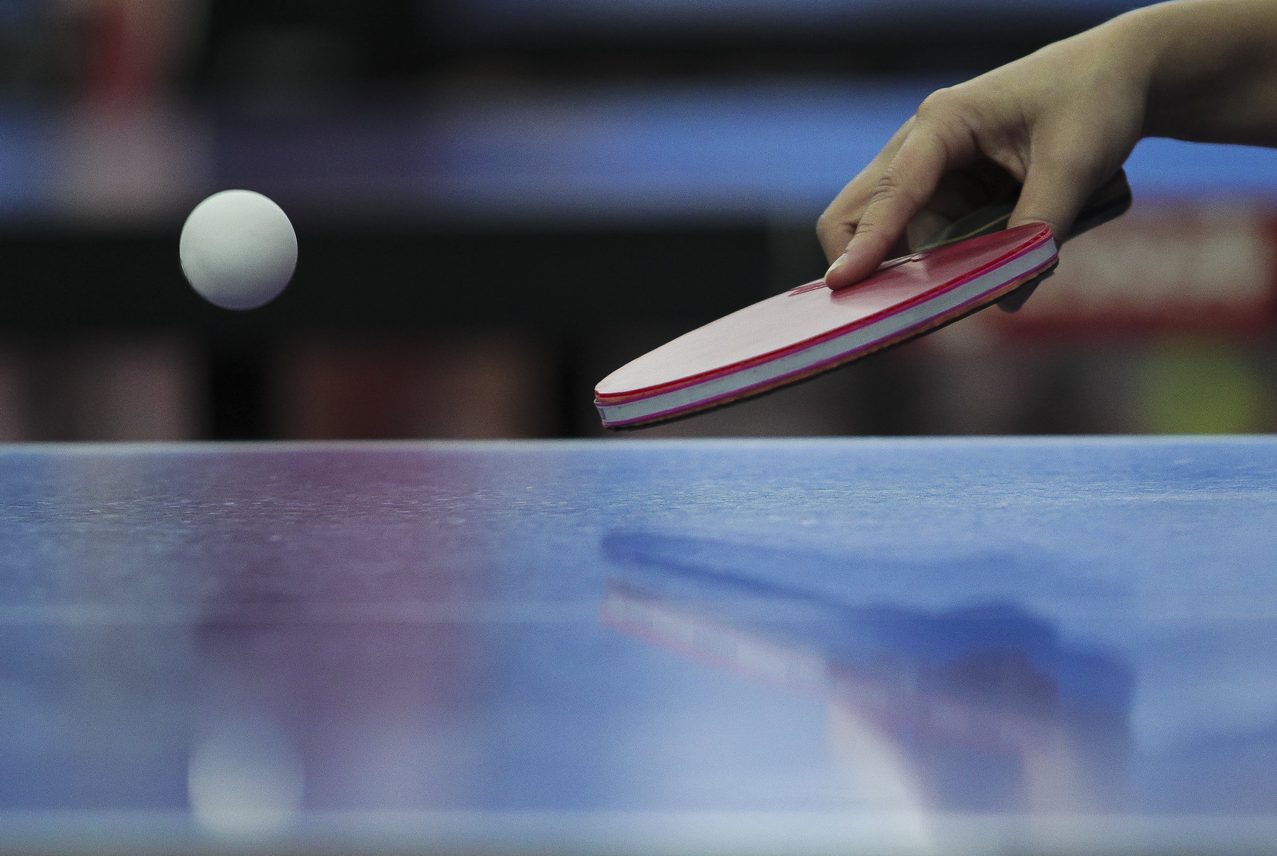 ping pong ball and paddle.jpg
