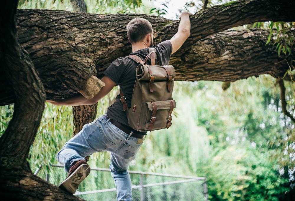 Dude climbs tree.jpg