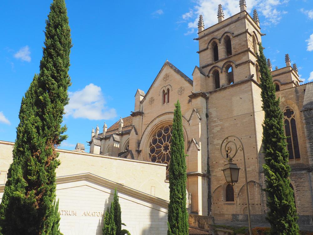 University of Montpellier 1.jpg