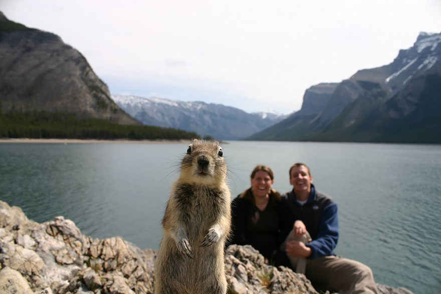 couple and squirrel photobomb.jpg