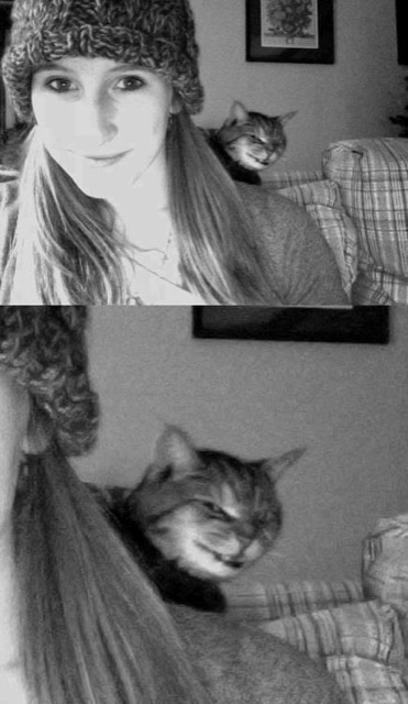 evil cat photobomb_goog.jpg
