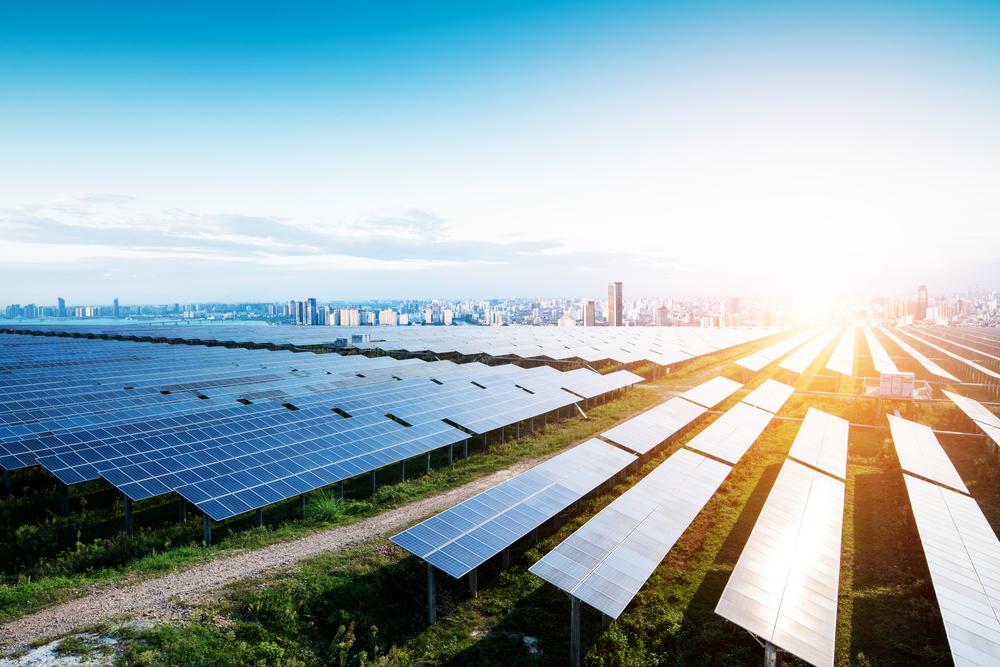 solar panel farm.jpg