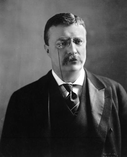 Theodore Roosevelt 2.jpg