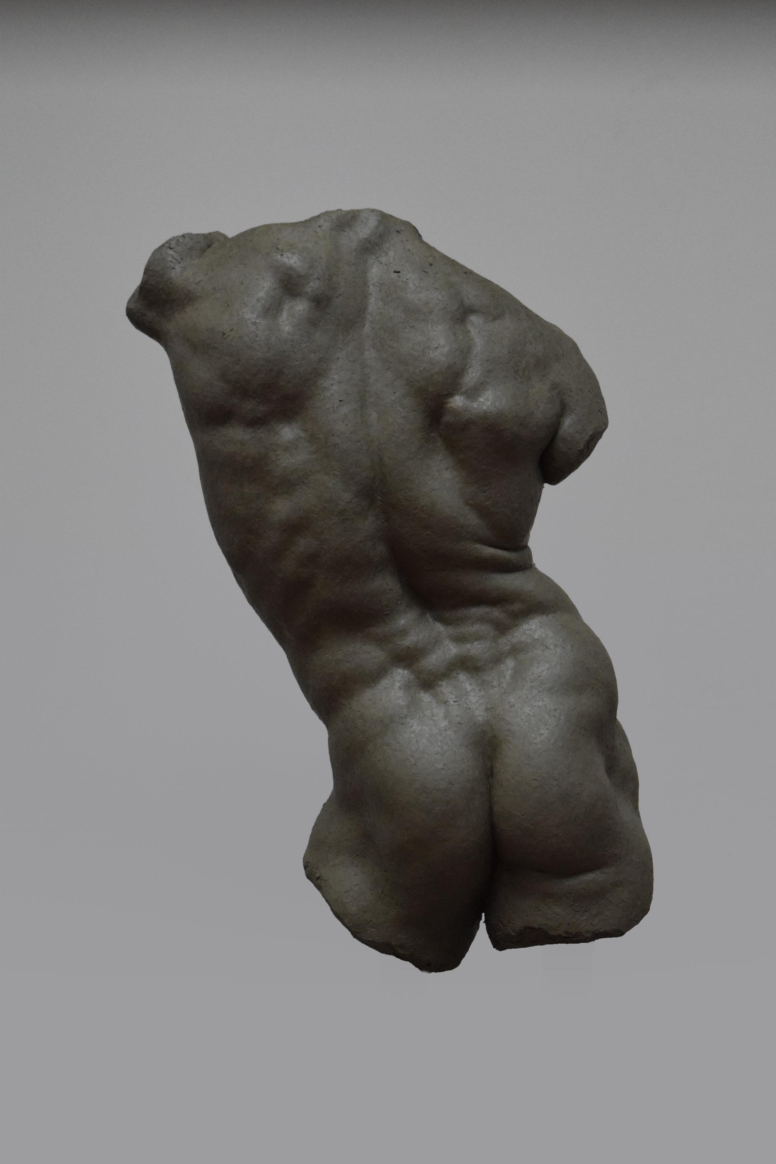 Live size torso 2.jpg