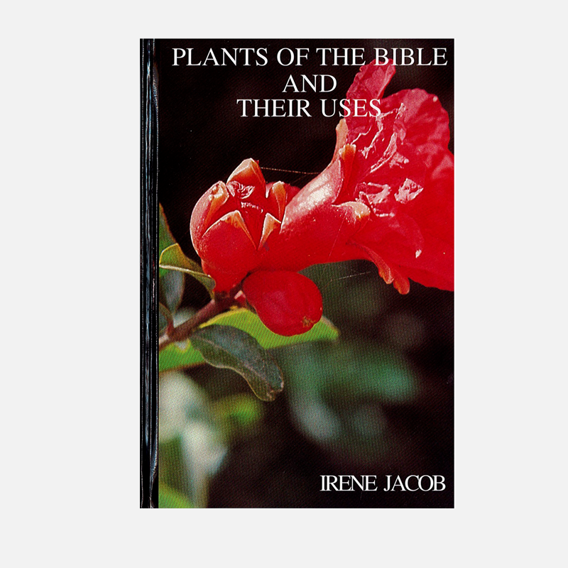 Plants-of-the-Bible-and-their-Uses-Cover-Square.jpg