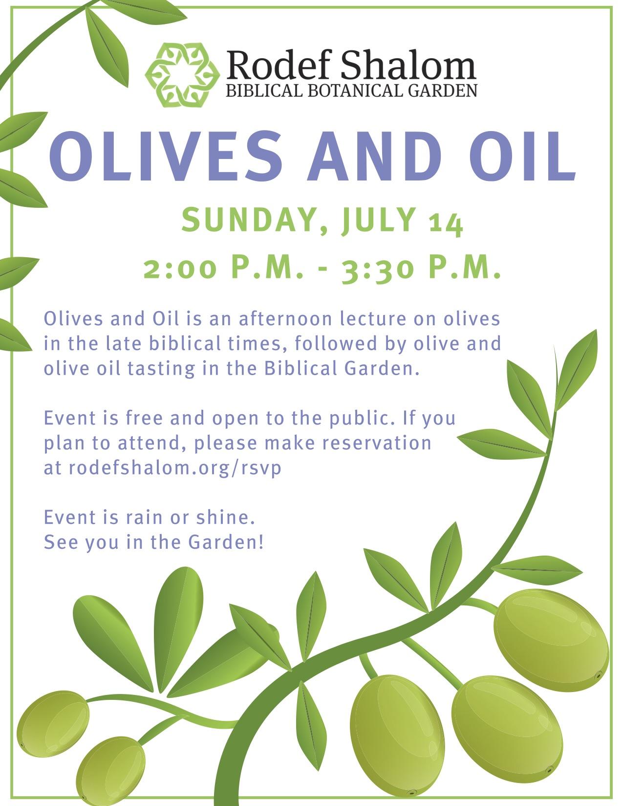 Olives and Oil Flyer (1).jpg