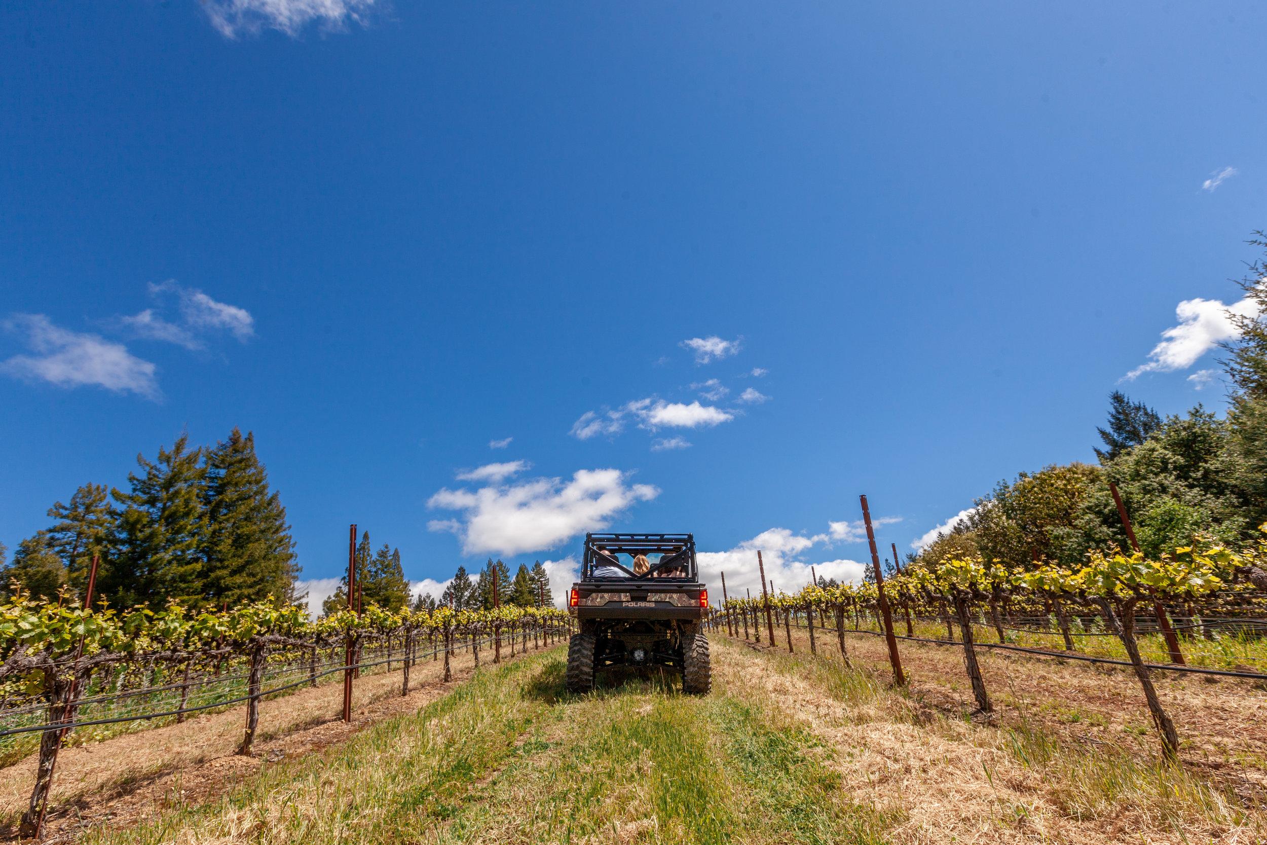 ATV on vineyard tour