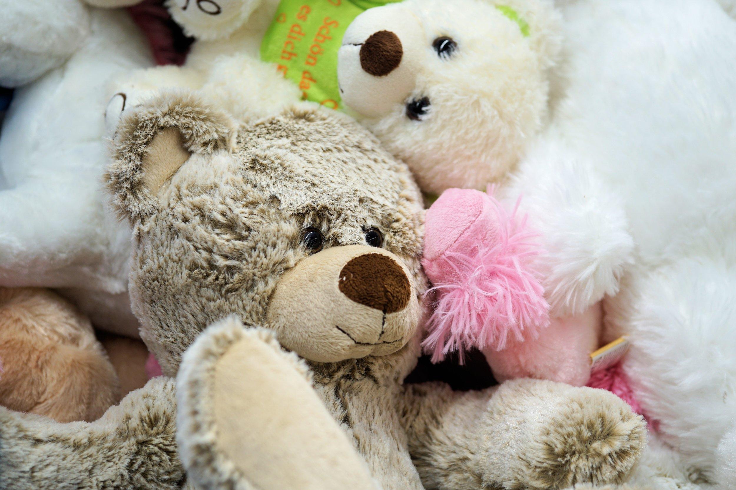 adorable-bears-child-357309.jpg