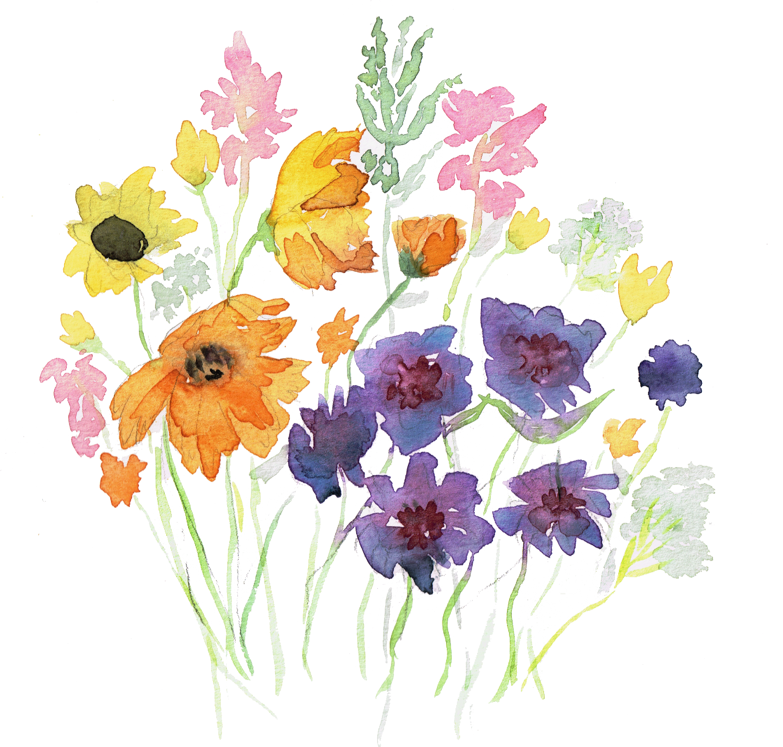 watercolors.png