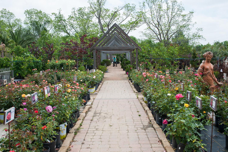 Enchanted Nurseries Landscapes