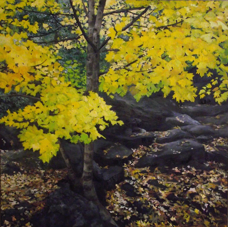 """elora, 2013, oil on canvas, 30"""" x 30"""""""