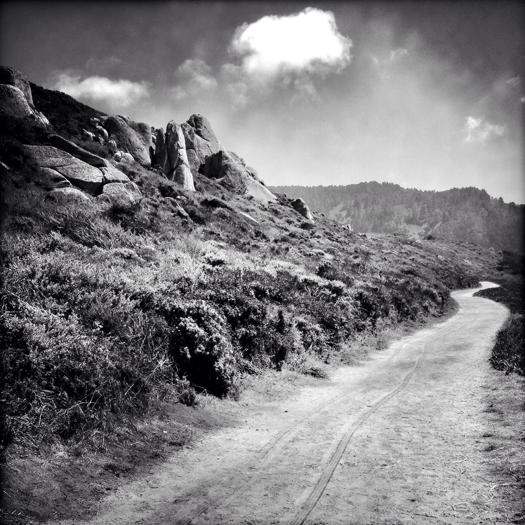 My Path, 2014
